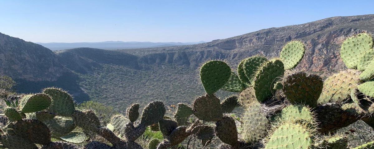day trip San Luis Potosí to La Joya crater